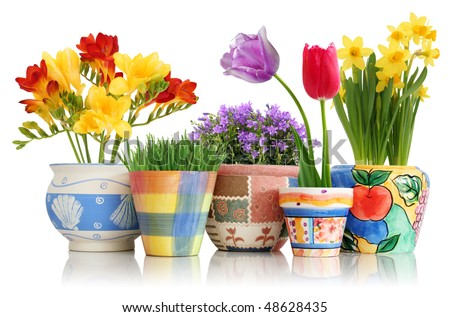 Colorful spring flowers in fun ceramic containers isolated on white - stock photo
