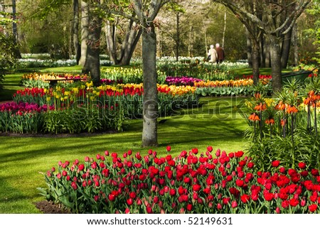 Colorful spring flowers in park on early morning in april - stock photo