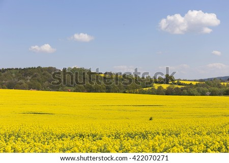 Colorful spring Landscape with yellow Rape