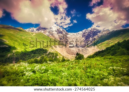 Colorful spring morninng in the Caucasus mountain. Soft focus effect. - stock photo