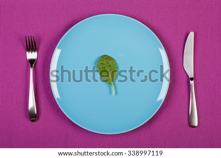 colorful stock image of spinach  leaf on a plate. diet concept - stock photo