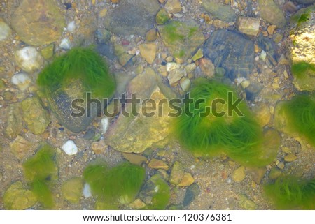 Colorful stones under sea water, with water effect over them,select focus with shallow depth of field,Ideal use for background.