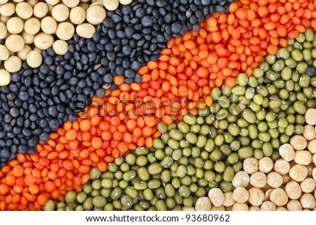 colorful striped rows of lentils, beans, peas, soybeans, legumes, seed, backdrop - stock photo