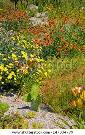 Colorful summer garden with assorted flowers and cactus plants - stock photo