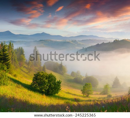 Colorful summer morning in the Carpathian mountains. - stock photo