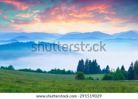 Colorful summer morning in the foggy Carpathian mountains. Borzhava ridge, Transcarpathian, Ukraine, Europe. - stock photo