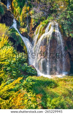 Colorful summer morning in the Plitvice Lakes National Park. Croatia. Europe.  - stock photo