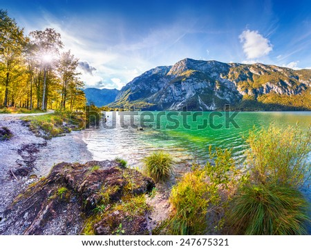 Colorful summer morning on the Bohinj lake in Triglav national park Slovenia, Julian Alps, Europe. - stock photo
