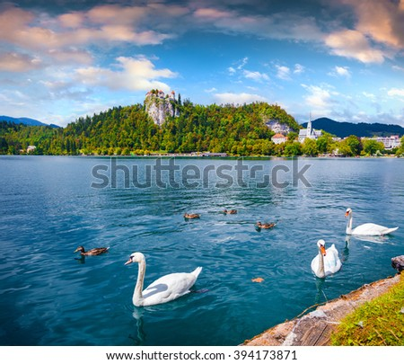 Colorful summer scene in the park of Bled town with medieval castle Blejski grad. White swans on Bled Lake. Morning in Julian Alpine. Slovenia, Europe. - stock photo