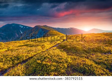 Colorful summer sunrise in the Carpathian mountains. Misty mountains glowing last sunlight by the evening sun. Located Chornogora ridge, Ukraine. - stock photo
