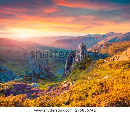 Colorful summer sunrise in the Carpathian mountains. Subalpine meadow Gadzhina view from Shpytsi mountain, Ukraine, Europe. Instagram toning. - stock photo