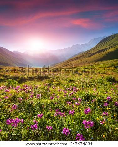 Colorful summer sunrise in the Caucasus mountains. Upper Svaneti, Georgia, Europe. - stock photo
