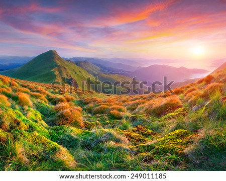 Colorful summer sunset in the mountains - stock photo