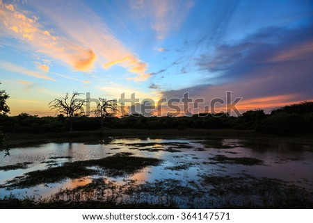 Colorful sunset at a lake in the forest - stock photo