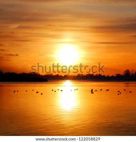 colorful sunset at the river bank with bird silhouettes - stock photo
