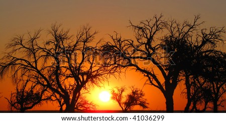 Colorful  sunset in  Namibia