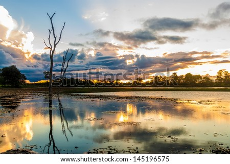 Colorful sunset in Pantanal, Brazil - stock photo