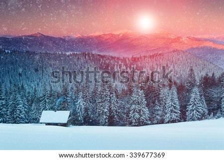 Colorful sunset in the winter mountains. Snowy forest and cabin on the background of falling snowflakes.  - stock photo