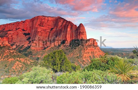 Colorful sunset in Zion National Park, Utah, USA. - stock photo
