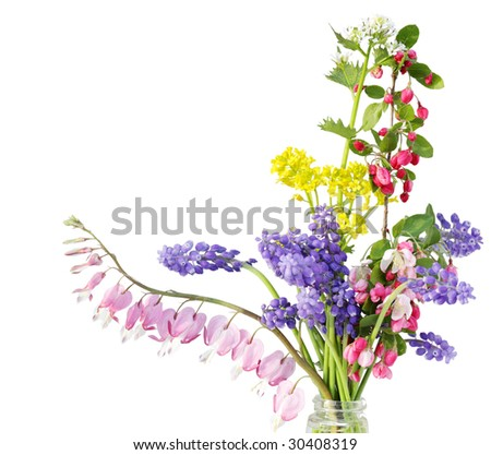 Colorful tiny flower in the bottle isolated on white