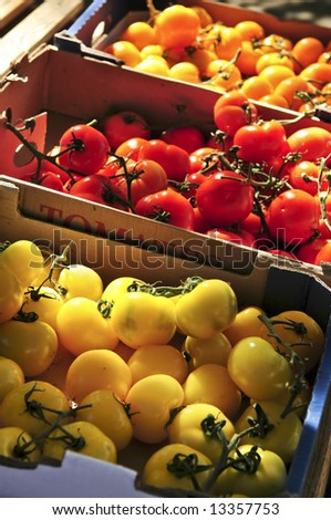 Colorful tomatoes for sale on farmer's market - stock photo