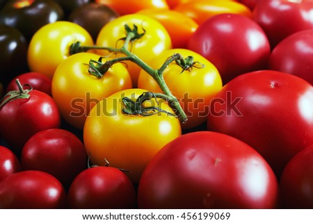 colorful tomatoes. green, red, yellow, orange tomatoes as background.