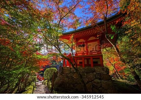 Colorful tree leaves around Daigoji temple at autumn against sunbeam in Kyoto, Japan - stock photo