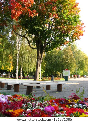 Colorful trees and flowers in park in Druskininkai, Lithuania - stock photo