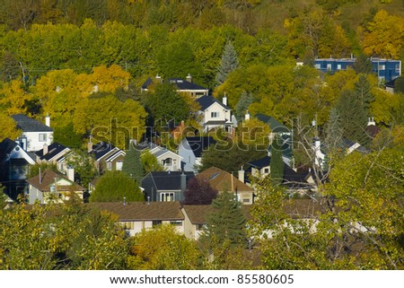 Colorful trees around house in fall time - stock photo