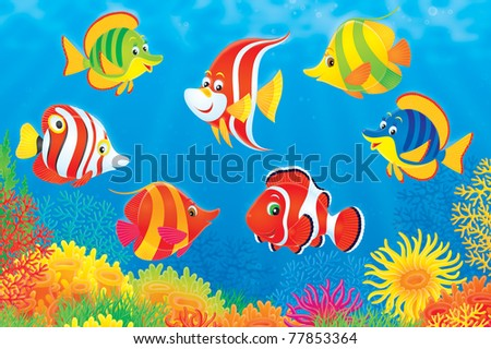 colorful tropical fishes swimming over a coral reef - stock photo