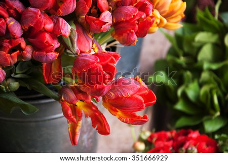 Colorful tulips and buttercups flowers. Selective focus. - stock photo