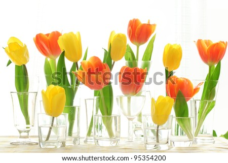 Colorful tulips in vase isolated on white - stock photo