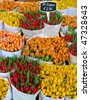 Colorful tulips on sale in Amsterdam flower market - stock