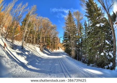 Colorful view of cross-country skiing path in beautiful winter with golden trees landscape in Aspen ,Colorado with blue HDR sky through fisheye lens, USA - stock photo