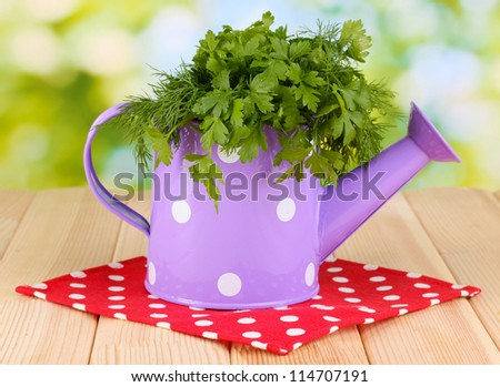 Colorful watering can with parsley and dill on wooden table on natural background - stock photo