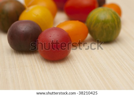 colorful wild tomatoes