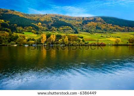 colorful wine fields along the mosel river in germany - stock photo