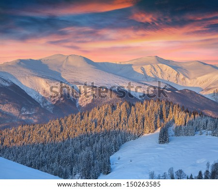Colorful winter landscape in mountains. Sunrise. - stock photo