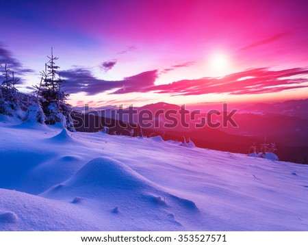 Colorful winter landscape in the mountains. Fantastic evening glowing by sunlight. View of snow-covered conifer trees  at sunset. - stock photo