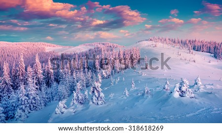 Colorful winter sunrise in the Carpathian mountains. Gorgany ridge, Ukraine, Europe. Instagram toning. - stock photo