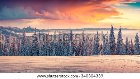 Colorful winter sunrise in the mountains.  - stock photo