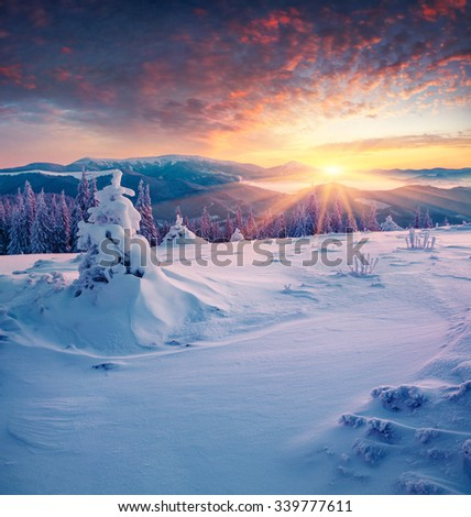 Colorful winter sunrise in the mountains. Happy New Year! - stock photo