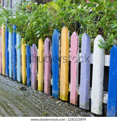 colorful wood fence in small garden with white flower - stock photo