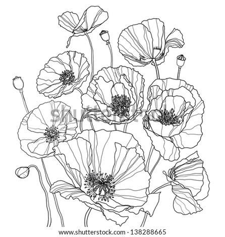 Coloring book with some poppies - stock photo