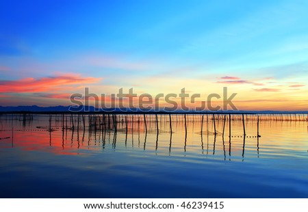 Colors in the sea - stock photo