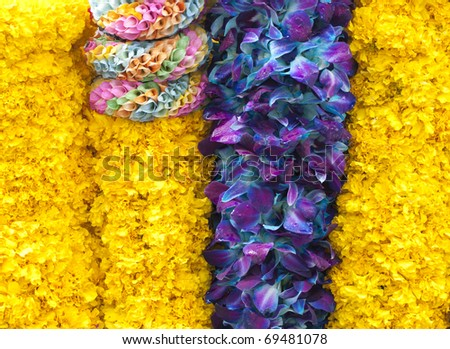 colors of flower offering - stock photo