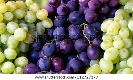 Colors of grapes Description: Red and white grapes - stock photo