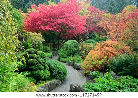 colors of japanese maples in national historical site Butchart Gardens, Vancouver island, British Columbia, Canada - stock photo
