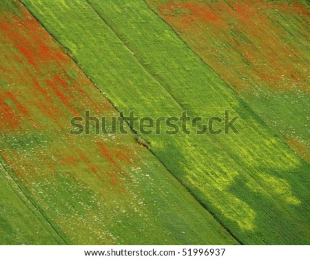 colors of Nature, Umbria, Italy - stock photo