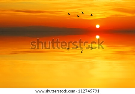 colors of summer - stock photo